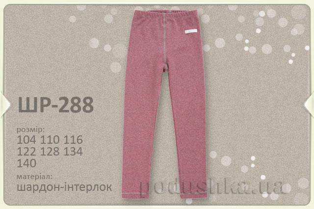Термобелье для девочки Bembi брюки ШР288