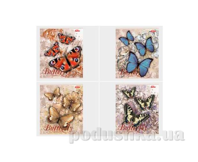 Тетрадь в клетку Бабочки Мечты сбываются TA5.6011.1729