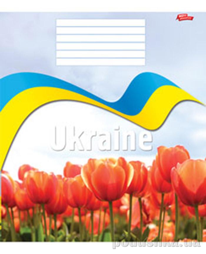 Украина: мечты сбываются