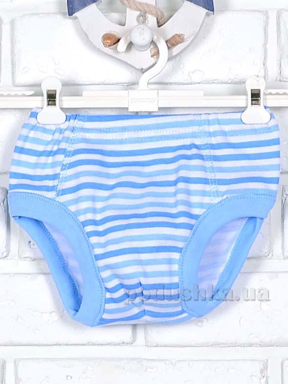 Трусы Татошка 11601 белые в голубую полоску