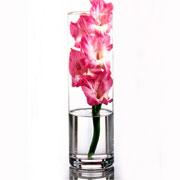 Декоративная ваза цилиндр Flora Pasabahce 43896
