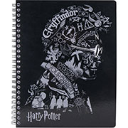 Колледж-блок Kite Harry Potter HP20-248-2, А5, 80 листов, клетка