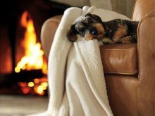 С приближением холодов, новые обновки в каждый дом! Теплые и уютные пледы от ТМ Barker Textiles.
