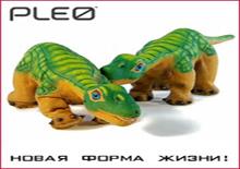 Хит продаж! Робот-динозаврик Pleo!